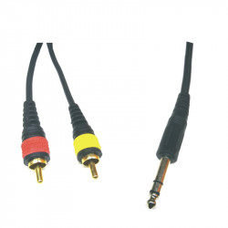 (CAP084A) 2RCA TO 6.35mm STEREO BLACK CABLE 2M